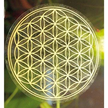 Bild von Aufkleber Blume des Lebens Kunststoff 5 cm VE2