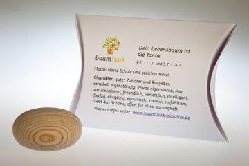 Bild von Handschmeichler Tanne mit Baumhoroskop von baumstark